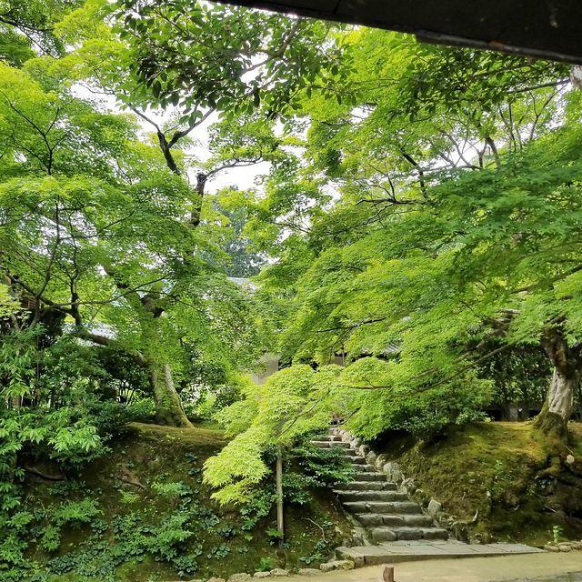 嵐山ポタ(小)_005