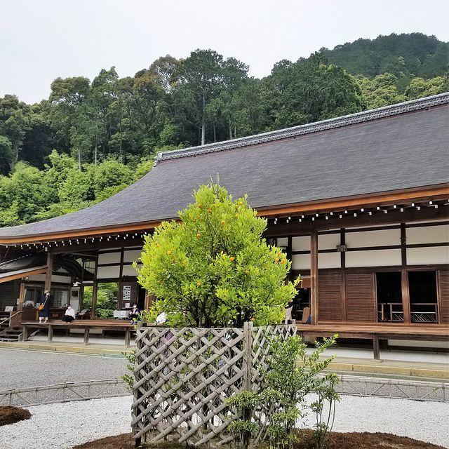 嵐山ポタ(小)_010