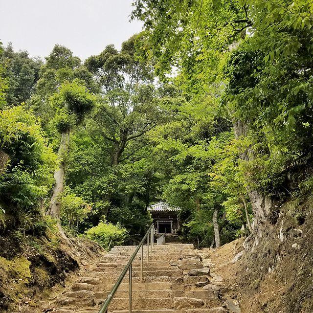 嵐山ポタ(小)_013
