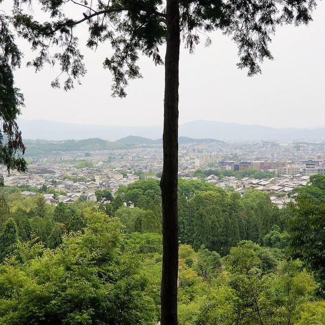 嵐山ポタ(小)_014