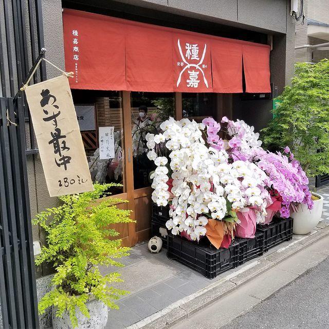 種嘉商店(小)_001