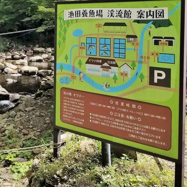 池田養魚場(小)_018