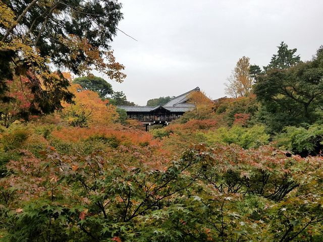 今熊野観音寺(小)_033