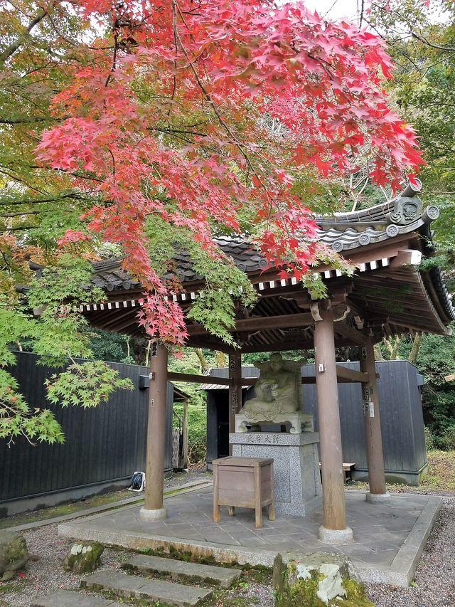 三井寺(小)_006