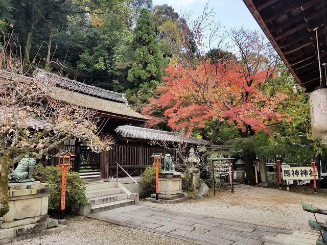 三井寺(小)_011