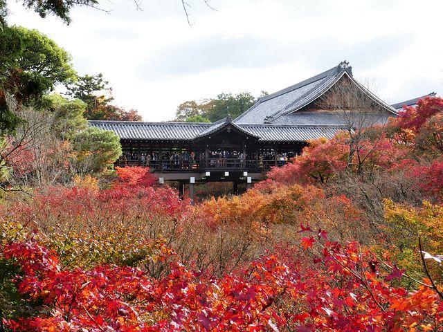 東福寺(小)_003