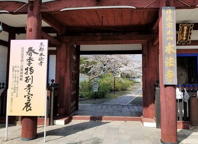 桜210326(小)_007