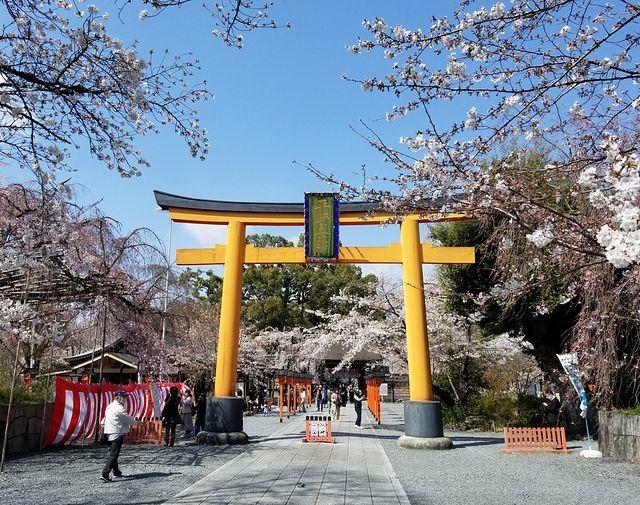 桜210326(小)_016