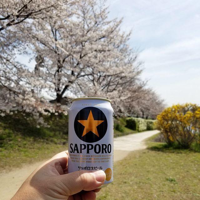 京都桜2(小)_008