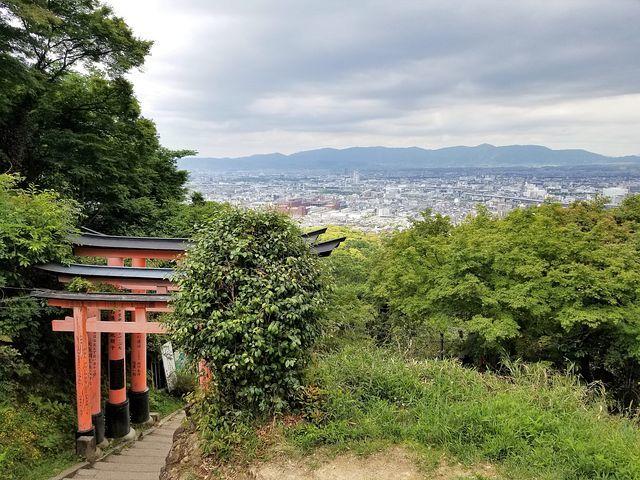 伏見稲荷登山!(小)_011