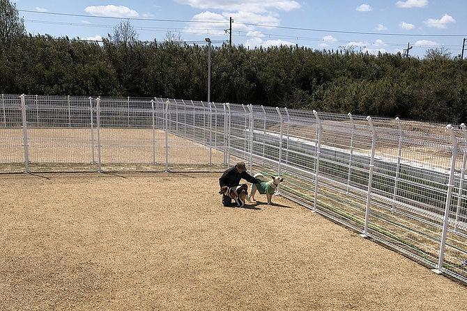 せとうちドッグパーク-せとうち保護犬猫の里-ドッグラン利用規約