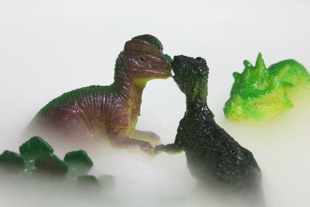 ドライアイスと恐竜