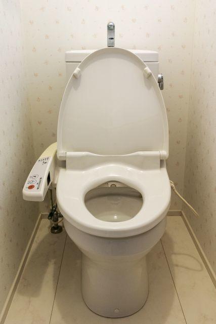 「ウォシュレット」は「洗うトイレ」ではなく「洗いましょう」の意味だった?