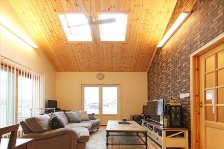 livingroom_swedenhome_surferhouse04.jpg