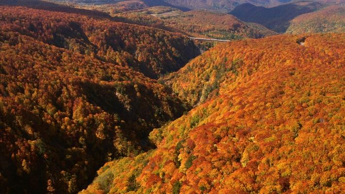 aomori-Mt_Hakkoda-m.jpg