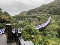 吊り橋201110