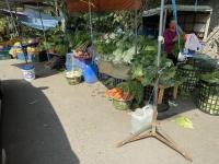地元野菜210124