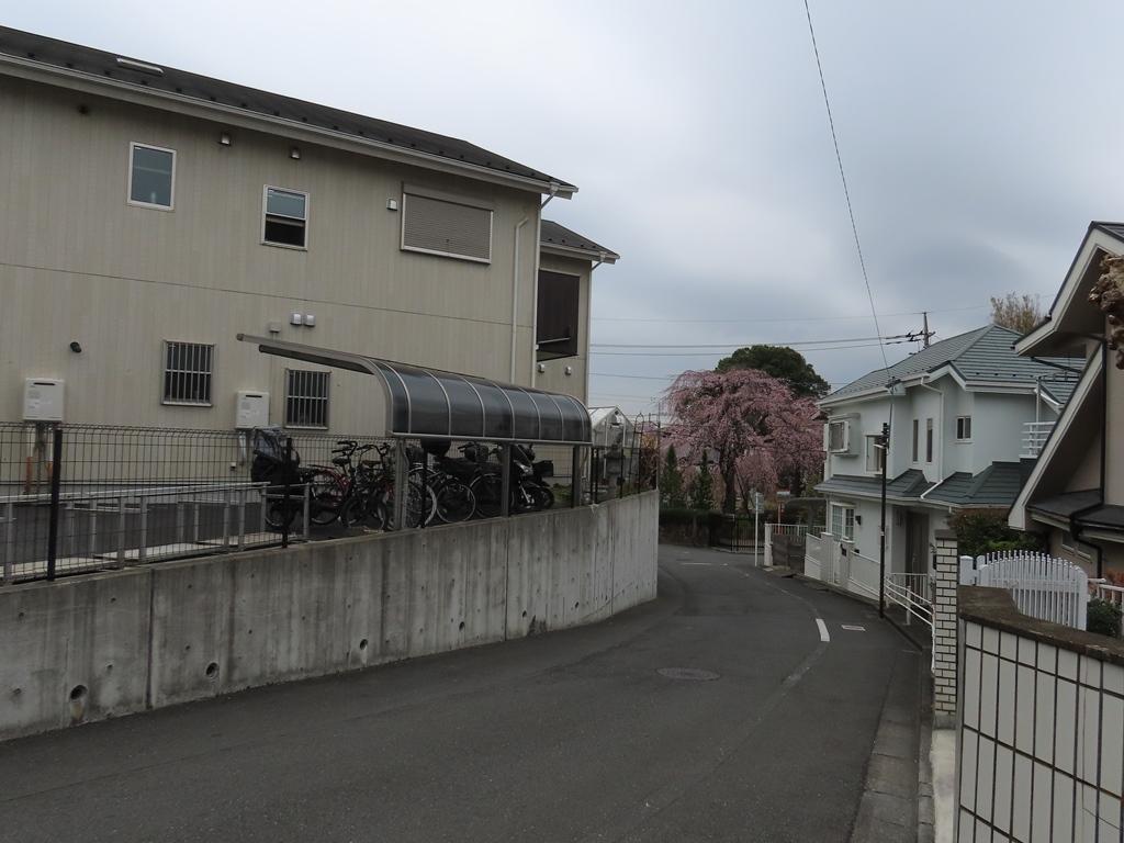 東郷寺近くの「かなしい坂」(上から見下ろす)