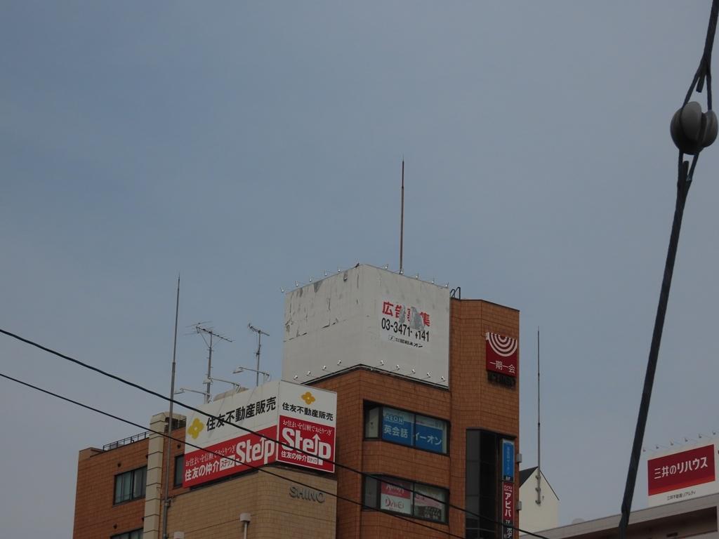 真ん中のビルの屋上にとまる長玄坊(チョウゲンボウ)♀(その2)