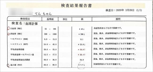 blog_000002106.jpg
