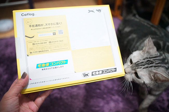 blog_000002111.jpg