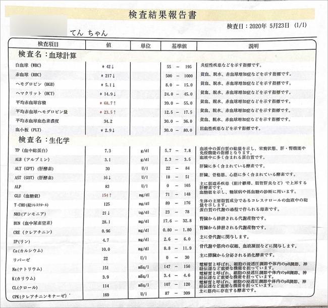 blog_000002320.jpg