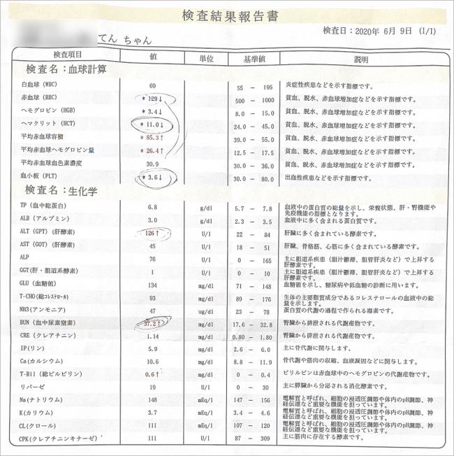 blog_000002389.jpg