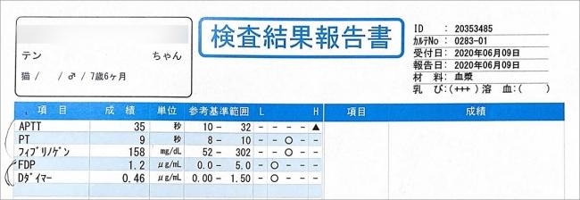 blog_000002400.jpg