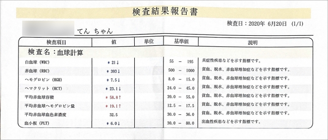 blog_000002449.jpg