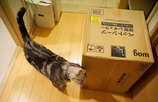 blog_000002471.jpg