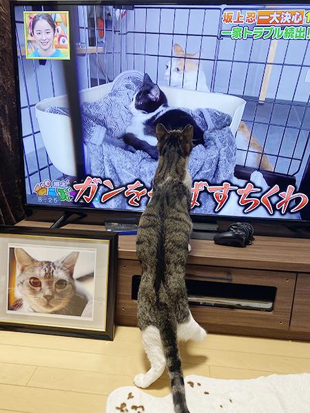 blog_000023019.jpg