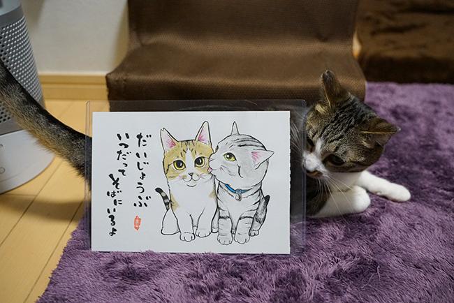 blog_000023141.jpg