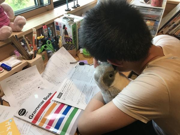 200505-英語の勉強