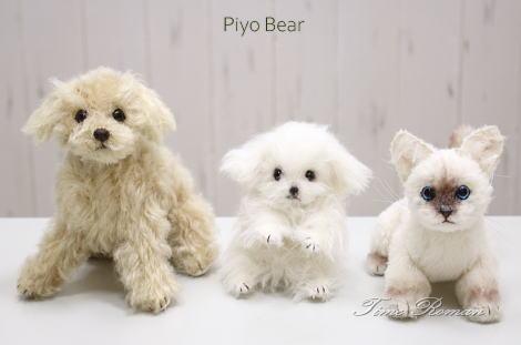 Piyo Bear