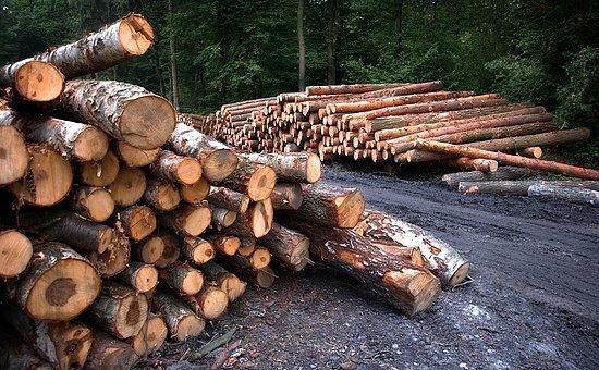 wood-3662510__340.jpg