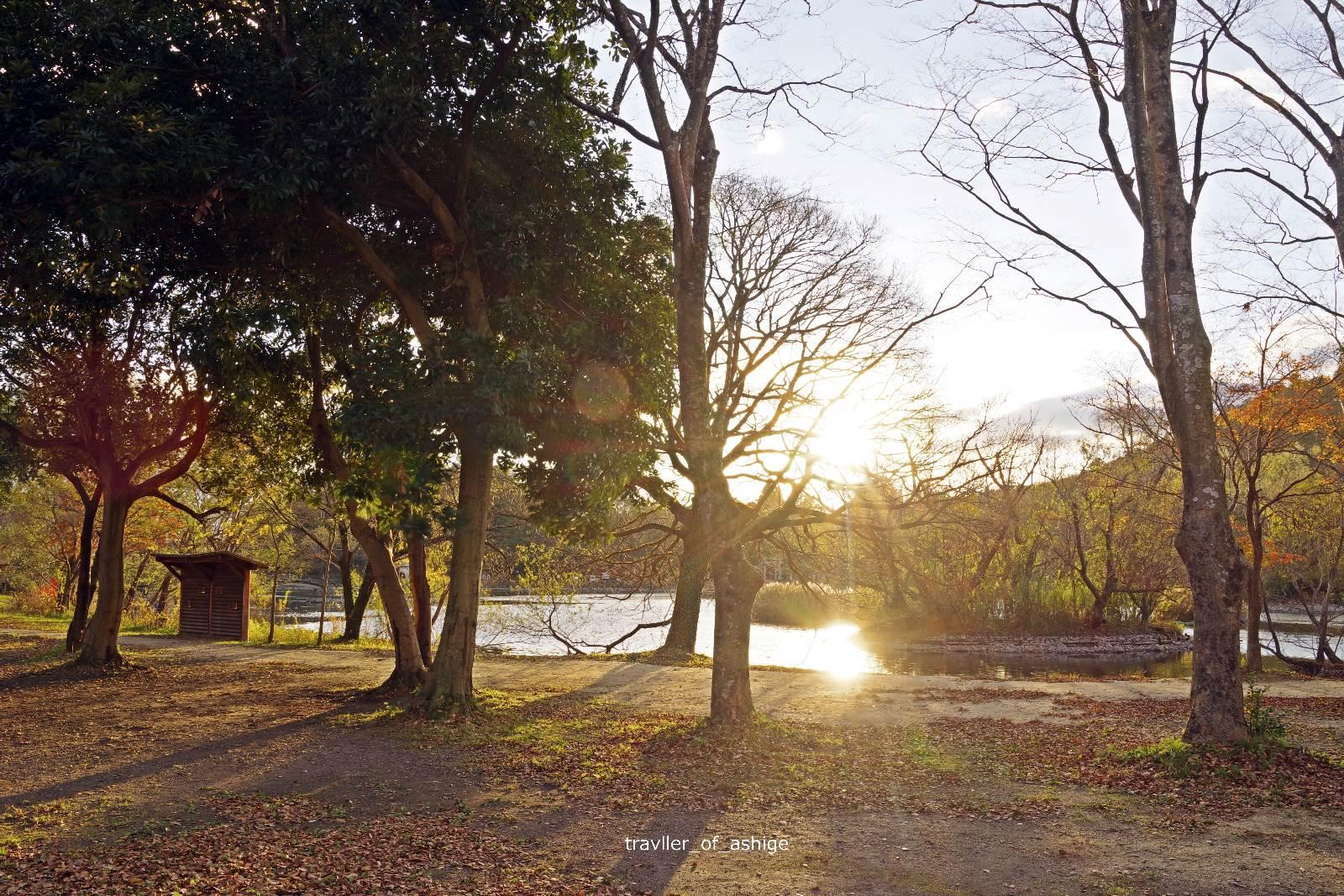 IMGP1657 三島池自然公園_7