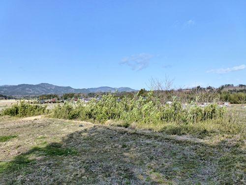haranomachi04.jpg