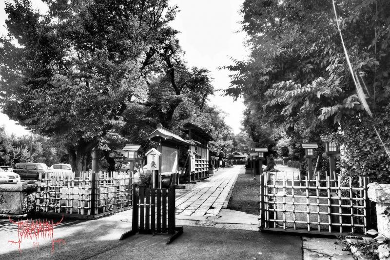 20200623_at_washinomiya_shrine_03