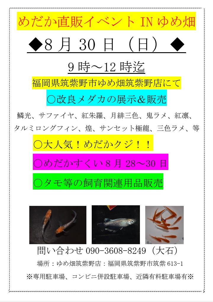 Effect_20200818_163721.jpg