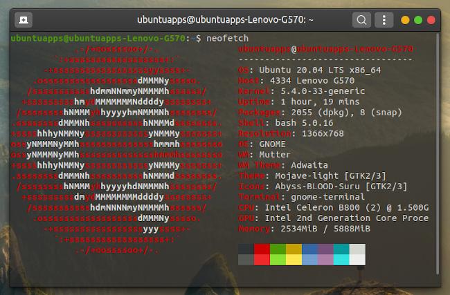 Ubuntu 20.04 Neofetch