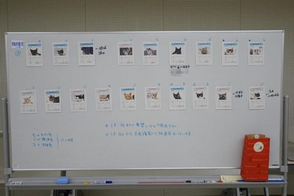 s-20200906 譲渡会_200906_0