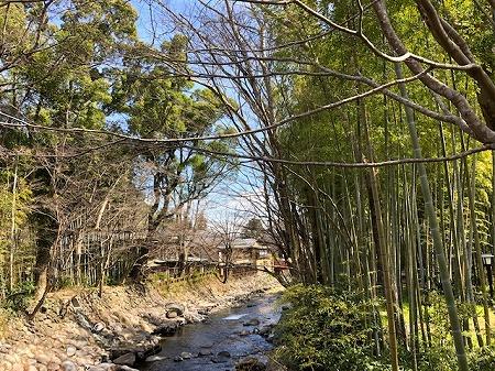 修善寺 (5)