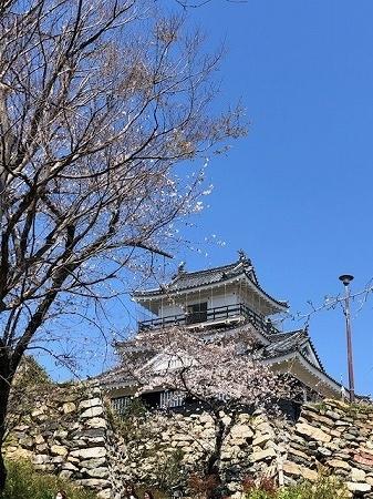 浜松城公園 (2)