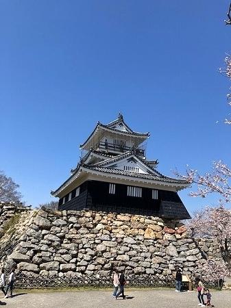 浜松城公園 (3)