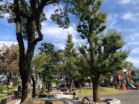 takajo park (3)
