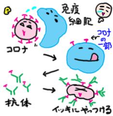 koutaii2_edited-2.jpg