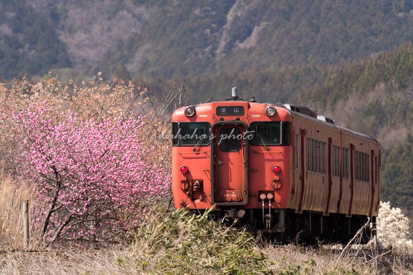020321tsuyama-2.jpg
