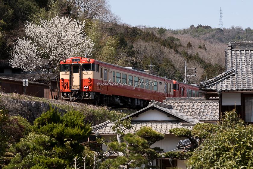 020321tsuyama-3.jpg