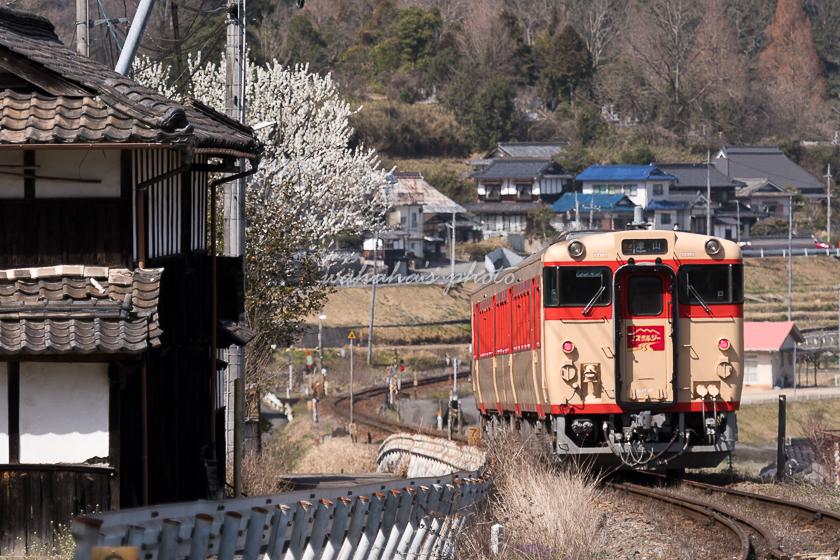 020321tsuyama-4.jpg