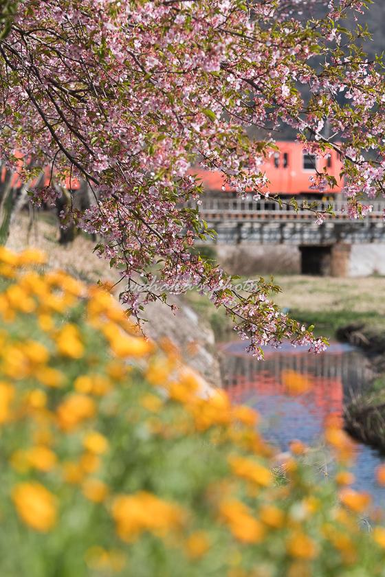 020321tsuyama-6.jpg